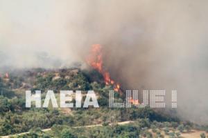 Ηλεία: Μεγάλη φωτιά στην Κλινδιά