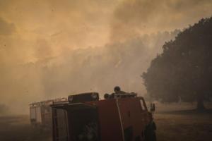 Ηλεία: Σύλληψη δύο ατόμων για την φωτιά στο Γεράκι