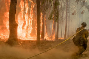 Ένας πυροσβέστης νεκρός από την φωτιά στην Καλιφόρνια – Η μεγαλύτερη στην ιστορία της πολιτείας