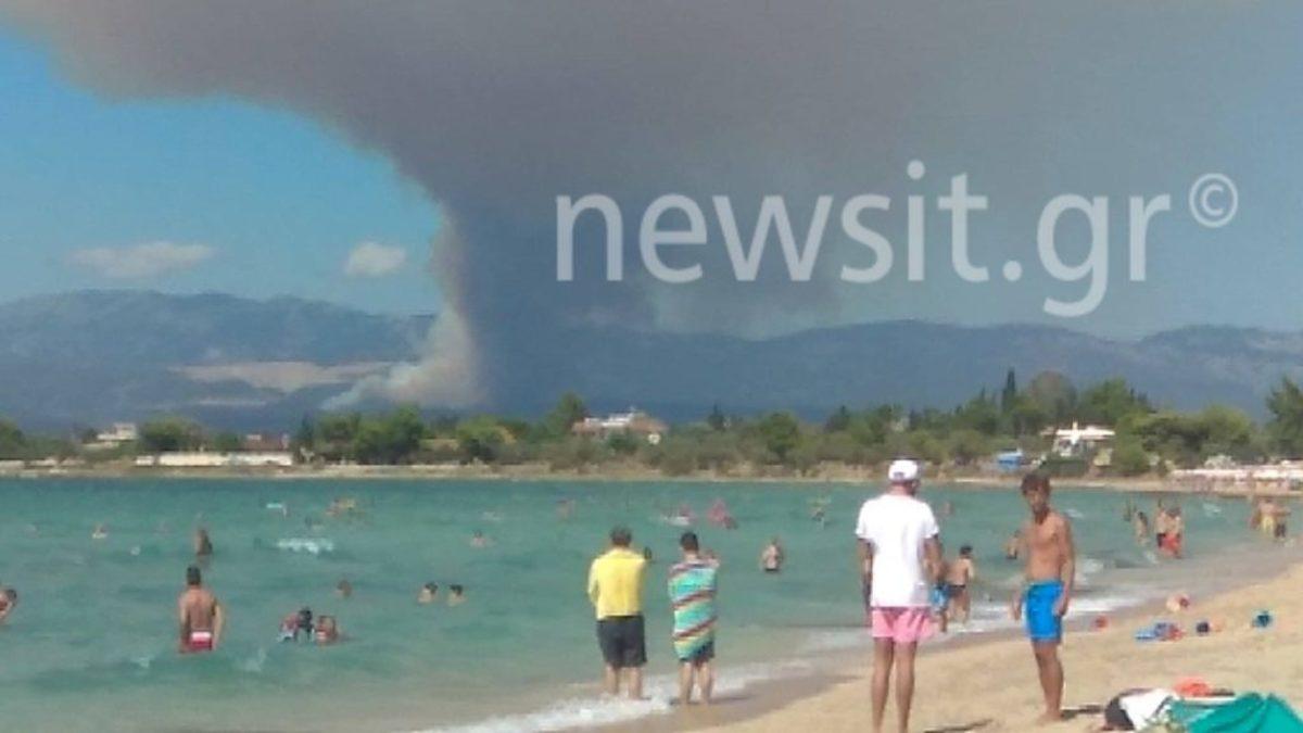 Εκκενώνονται χωριά στην Εύβοια – Οι φλόγες καίνε το χωριό Κοντοδεσπότι κοντά στα Ψαχνά – Τριπλό μέτωπο στην Εύβοια