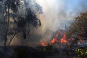 """Φωτιά Αχαϊα: """"Προσπάθησαν να κάψουν το χωριό μας – Είδαν τον εμπρηστή μέσα στο σκοτάδι"""""""