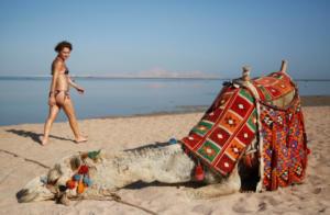 Πουλά την καμήλα του για να εξαγοράσει τη στρατιωτική του θητεία!