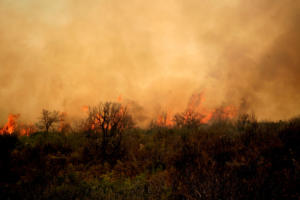 Μάχη από γη και αέρα με τη μεγάλη φωτιά στην Αρκαδία