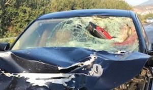 Φθιώτιδα: Σκληρές εικόνες σε φοβερό τροχαίο – Σκοτώθηκε ακαριαία νεαρός οδηγός μηχανής [pics]