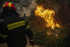 Ηλεία: Υπό μερικό έλεγχο η φωτιά στο Καπελέτο