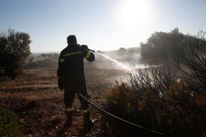 Φωτιά στον Μαραθώνα: Καλύτερη η εικόνα, δεν κινδυνεύουν σπίτια