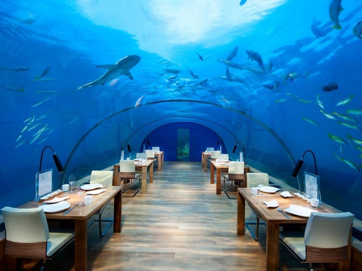 Ανοίγει το πρώτο υποβρύχιο εστιατόριο στον κόσμο! – video