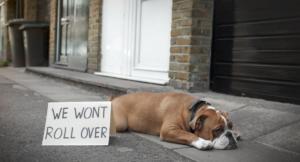 Wooferendum: Η πιο ανατρεπτική διαδήλωση κατά του Brexit