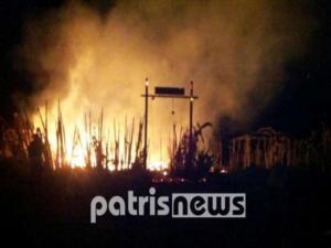 Φωτιά στην περιοχή Καπελέτο της Ηλείας! Μεγάλη κινητοποίηση της Πυροσβεστικής