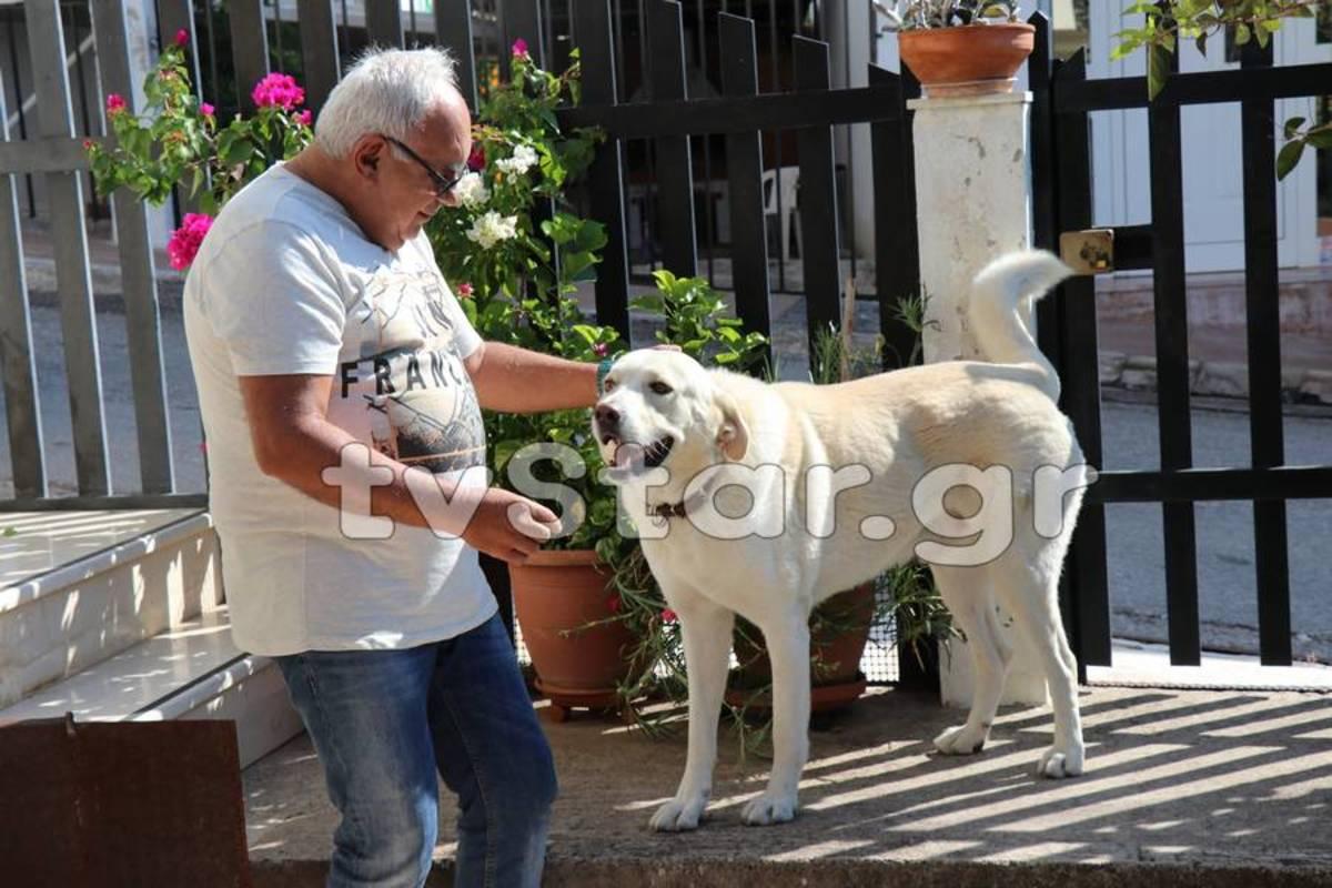 Φθιώτιδα: Πρόστιμο 500 ευρώ γιατί… γαβγίζει ο σκύλος του!