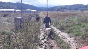 Εύβοια: Ψάχνουν παντού την αγνοούμενη από το Μαντούδι – ΕΜΑΚ και δύτες στις έρευνες [pics]