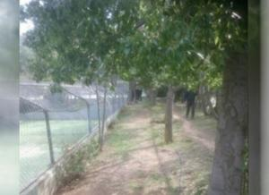 Άνδρας βρέθηκε απαγχονισμένος στο Άλσος Βεΐκου
