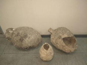 Κρήτη: Ψάρεψαν… αρχαίους αμφορείς! [pic]