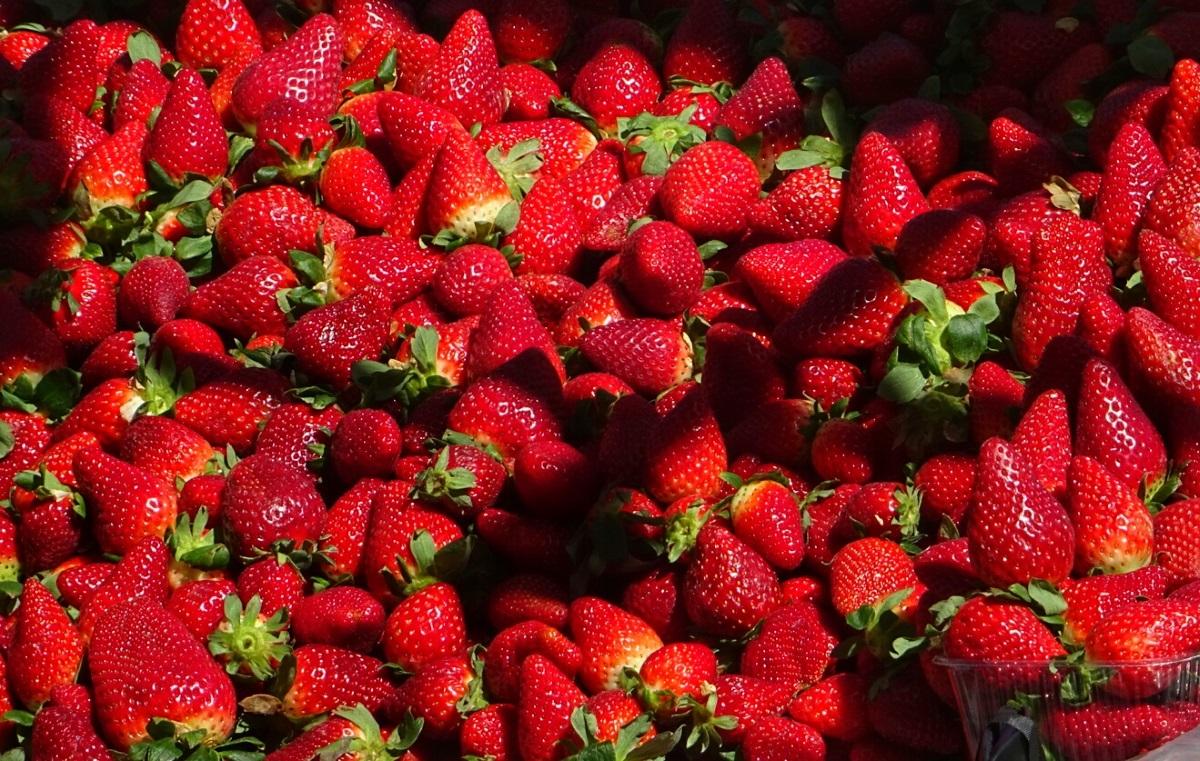 Συνέλαβαν 50χρονη για το σκάνδαλο με τις φράουλες που είχαν μέσα... βελόνες ραψίματος!