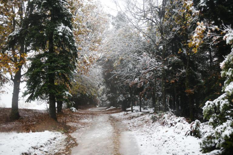 Καιρός: Έκτακτο δελτίο – Χιόνια, απότομη πτώση της θερμοκρασίας και θυελλώδεις βοριάδες