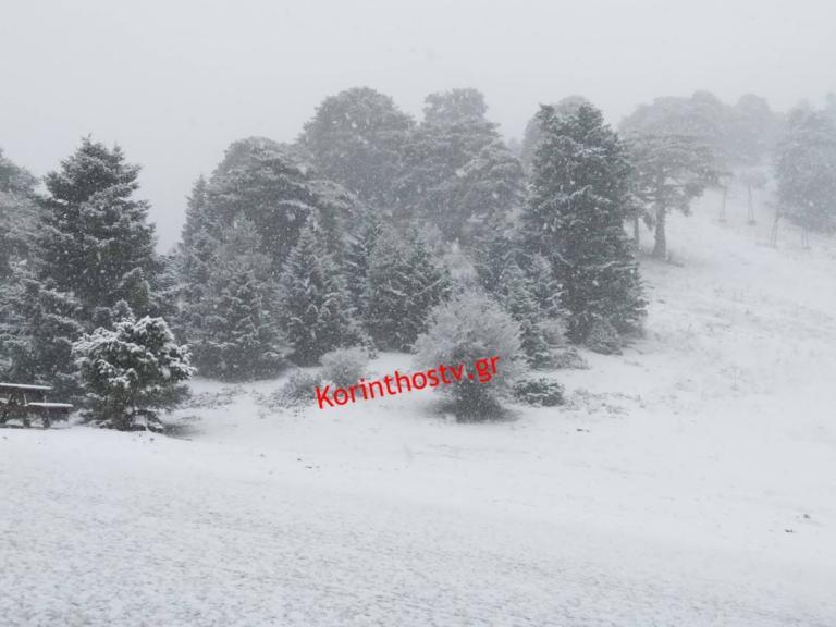 """Καιρός: Σε κλοιό χιονιά η χώρα! Λευκό πέπλο έχει καλύψει τα ορεινά – Πού το """"έστρωσε"""""""
