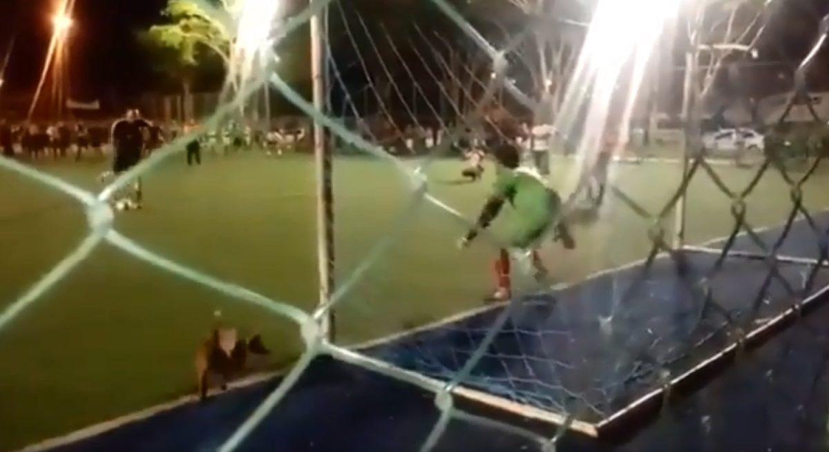 Σκύλος έκανε τον… Μπουφόν! Επικό βίντεο σε αγώνα ποδοσφαίρου