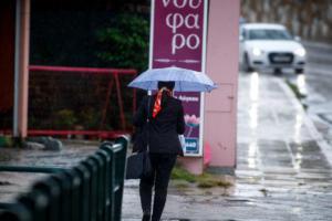 Λέσβος: Έβρεξε προβλήματα σε διάφορα σημεία – Το νερό κατέβασε στους δρόμους πέτρες και κλαδιά!