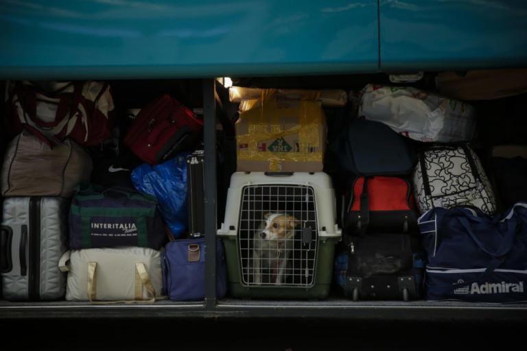 Βόλος: Ο επιβάτης λεωφορείου των ΚΤΕΛ δεν ήταν τόσο αθώος όσο έδειχνε – Αυτά είναι τα πειστήρια της ενοχής του [pics]