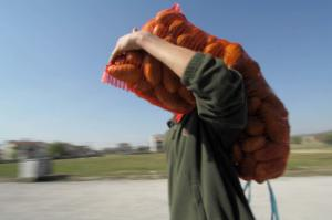 """Φθιώτιδα: """"Πλήρωσαν"""" 700 ευρώ… για λίγες πατάτες!"""