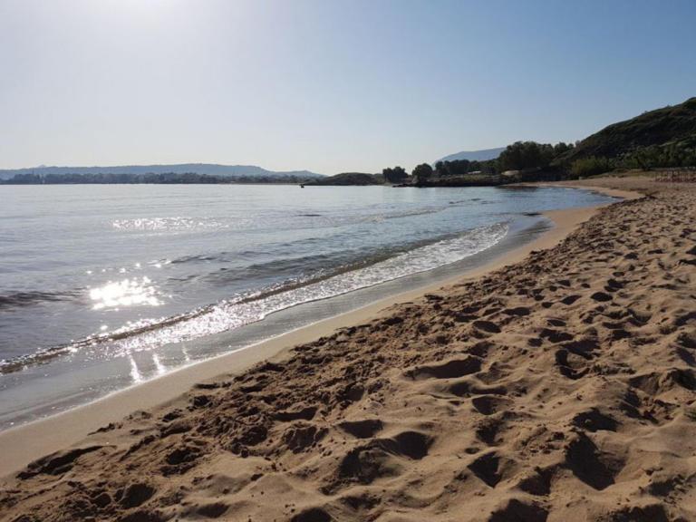 Κρήτη: Δεν πίστευαν στα μάτια τους στην Απτέρα! Τεράστιο κουφάρι στην παραλία [pics]