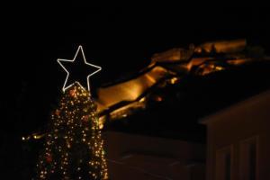 """Αργολίδα: Έκλεψαν τα στολίδια από το χριστουγεννιάτικο δέντρο – """"Ζητάω συγγνώμη για την κοινωνία που ζούμε""""!"""