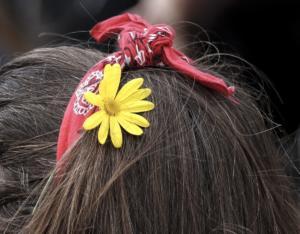 Ρόδος: Το τσιμπιδάκι στα μαλλιά έκρυβε ένα ανατριχιαστικό μυστικό – Πάγωσαν όταν άκουσαν την περιγραφή της!