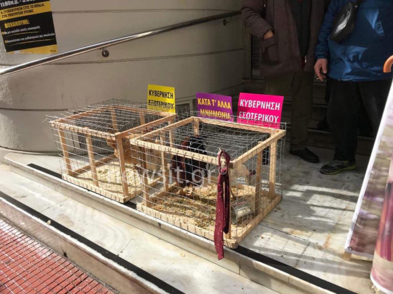 Με κότες, κοκόρια και… γραβάτες στο υπουργείο Υγείας