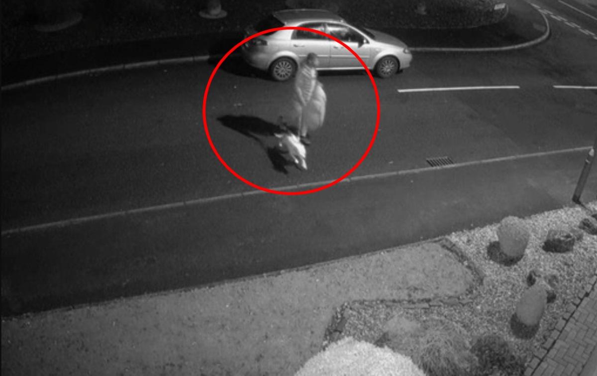 Το βίντεο που ραγίζει καρδιές: Εγκατέλειψε το σκύλο του στο δρόμο – Εκείνος έτρεχε πίσω από το αυτοκίνητο