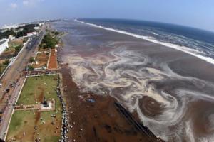 """Τσουνάμι Ινδονησία: Οι """"βιβλικές"""" καταστροφές από το 2004 και μετά – video"""