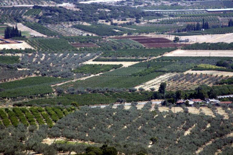 Παράταση στην υποβολή αντιρρήσεων επί των αναρτημένων δασικών χαρτών