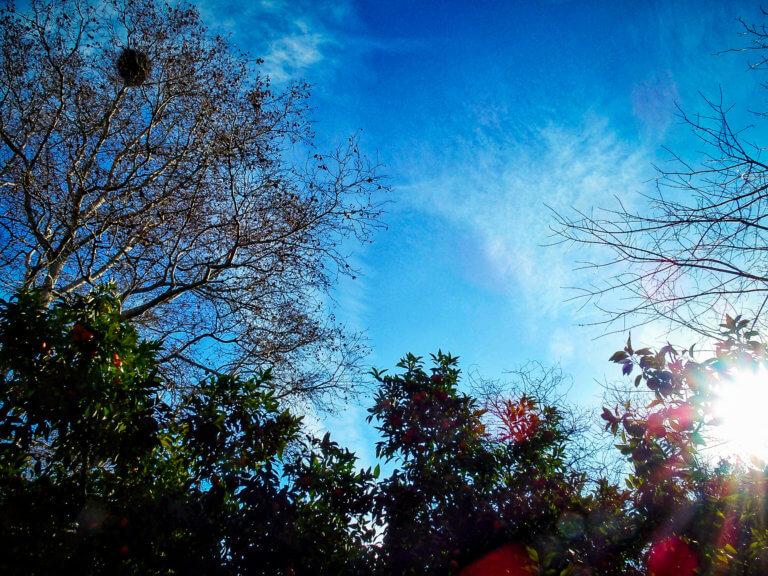 Καιρός: Ηλιόλουστο «καλωσόρισμα» του Φλεβάρη – Άνοδος της θερμοκρασίας την Παρασκευή | Newsit.gr