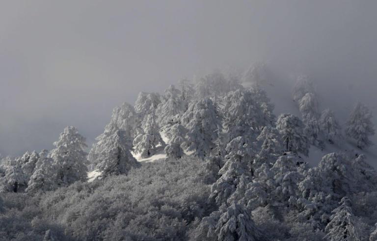 Καιρός: Νέα επέλαση του χιονιά και πολικό ψύχος σήμερα Δευτέρα