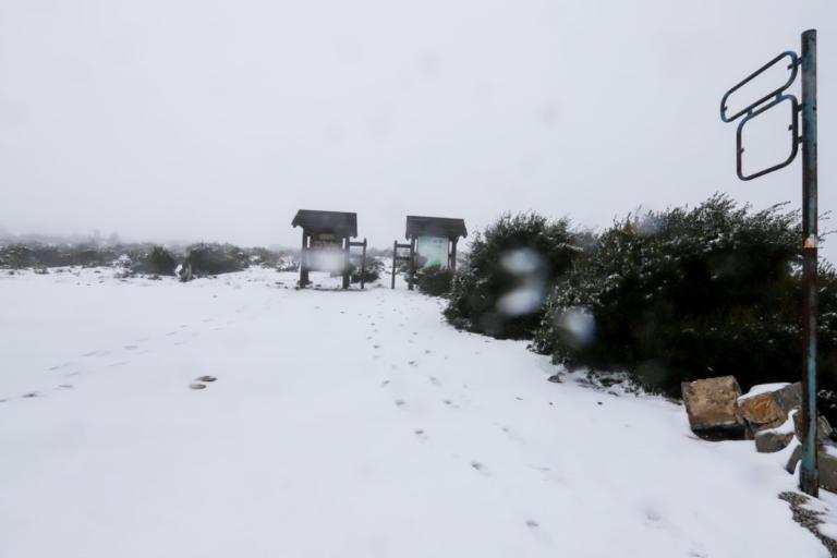 Καιρός: Που θα χιονίσει στην Αττική – Οι περιοχές που θα «ντυθούν» στα λευκά
