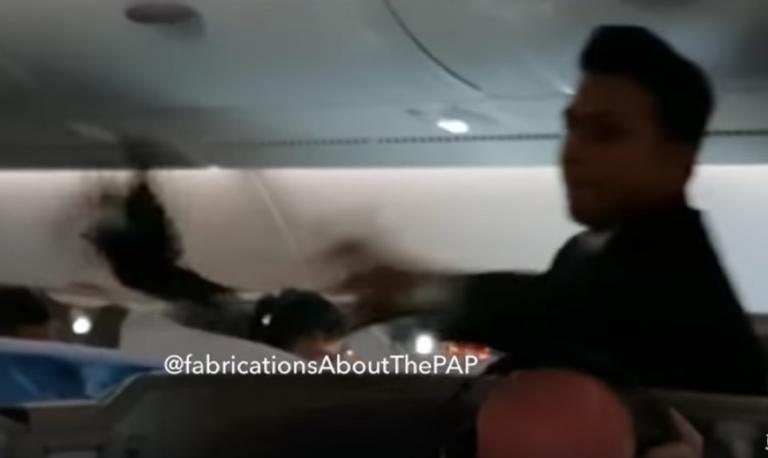 Μια… μάινα προκάλεσε πανικό στον αέρα! Έκανε άνω κάτω το αεροπλάνο – video | Newsit.gr