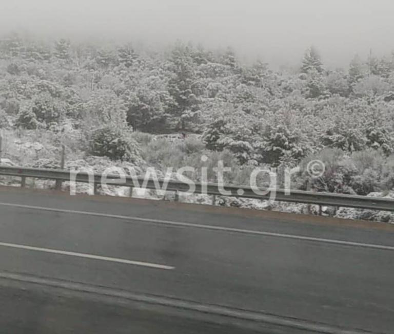 Καιρός: Που χιονίζει τώρα – Το 'στρωσε στη Μαλακάσα – video