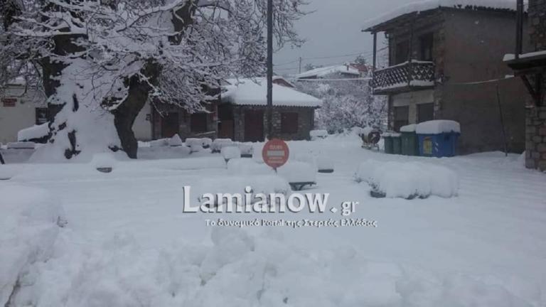 Φωκίδα: Υποδέχθηκαν το νέο χρόνο με -6 και… ντριφτάροντας στο χιόνι! – video   Newsit.gr