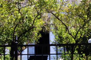 Μαξίμου: Τρομοκρατούν βουλευτές εν γνώσει και με την καθοδήγηση του Μητσοτάκη