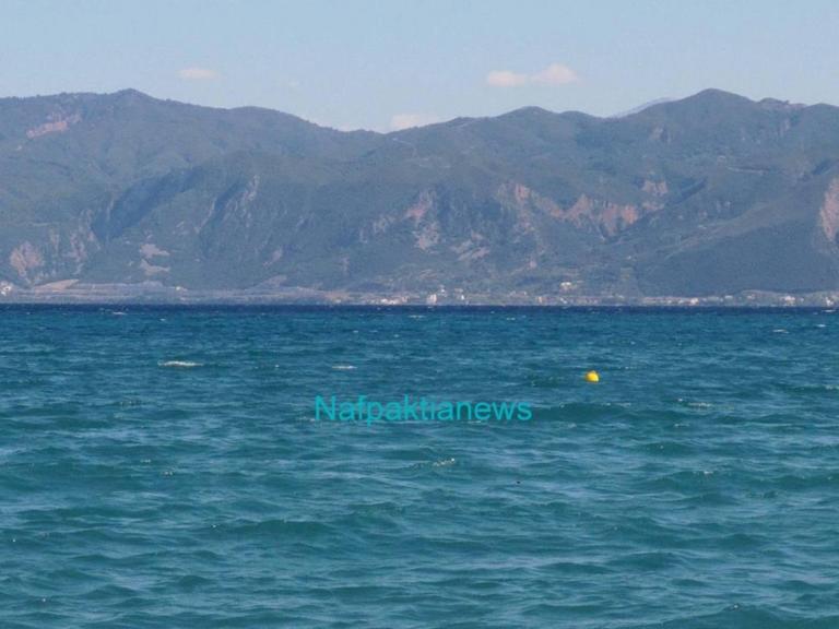 Πτώση αεροσκάφους στο Μεσολόγγι: Αγωνία για την τύχη του πιλότου [pics, video] | Newsit.gr