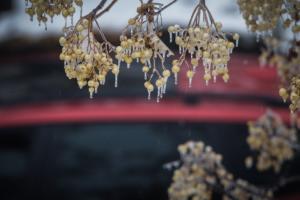 Καιρός: Αντέχει… η Υπατία και στέλνει βροχές και καταιγίδες – Παγετός τις πρωινές και βραδινές ώρες!