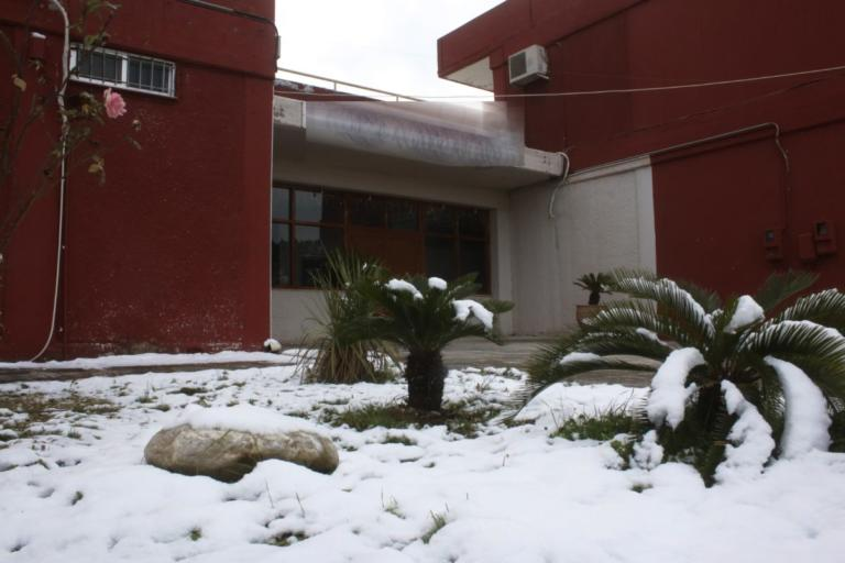 Κλειστά σχολεία στο Δήμο Θηβαίων