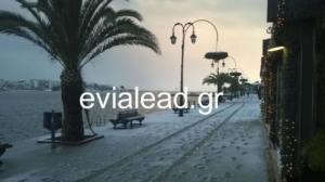 Καιρός: Τα χιόνια στη Χαλκίδα έφτασαν μέχρι τη θάλασσα – Αποκλεισμένα χωριά στην Εύβοια [pics]