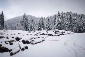 Καιρός: Ορμητική εισβολή της «Σοφίας» – Φέρνει χιόνια ακόμη και μέσα στην Αθήνα!