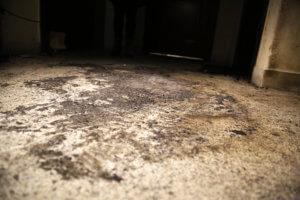 Γκαζάκια στα γραφεία της Χρυσής Αυγής στον Ασπρόπυργο