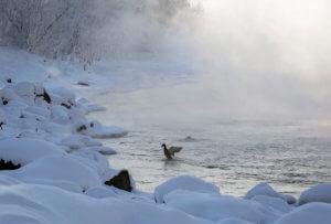 Χιονοπτώσεις ρεκόρ νεκρώνουν την Αγία Πετρούπολη