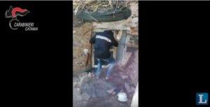 Ιταλία: Κινηματογραφική σύλληψη του δραπέτη «Ταρζάν» – video