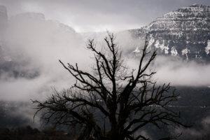 Καιρός: Φέρνει θυελλώδεις ανέμους και κρύο η «Χιόνη» – Ποιες περιοχές απειλεί
