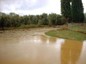 Κρήτη: Κοίταξε στον ποταμό και αυτό που είδε να επιπλέει δεν ήταν βάρκα