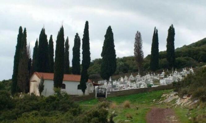 Γιατί στα νεκροταφεία φυτεύουν κυπαρίσσια