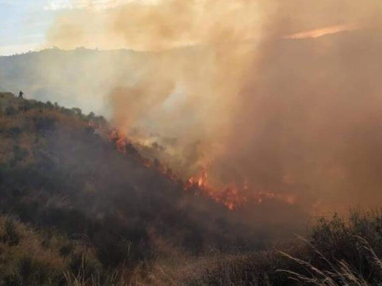 """Πάτρα: Τραυματίες δύο πυροσβέστες που έδιναν """"μάχη"""" με τις φλόγες στα Συχαινά – video"""